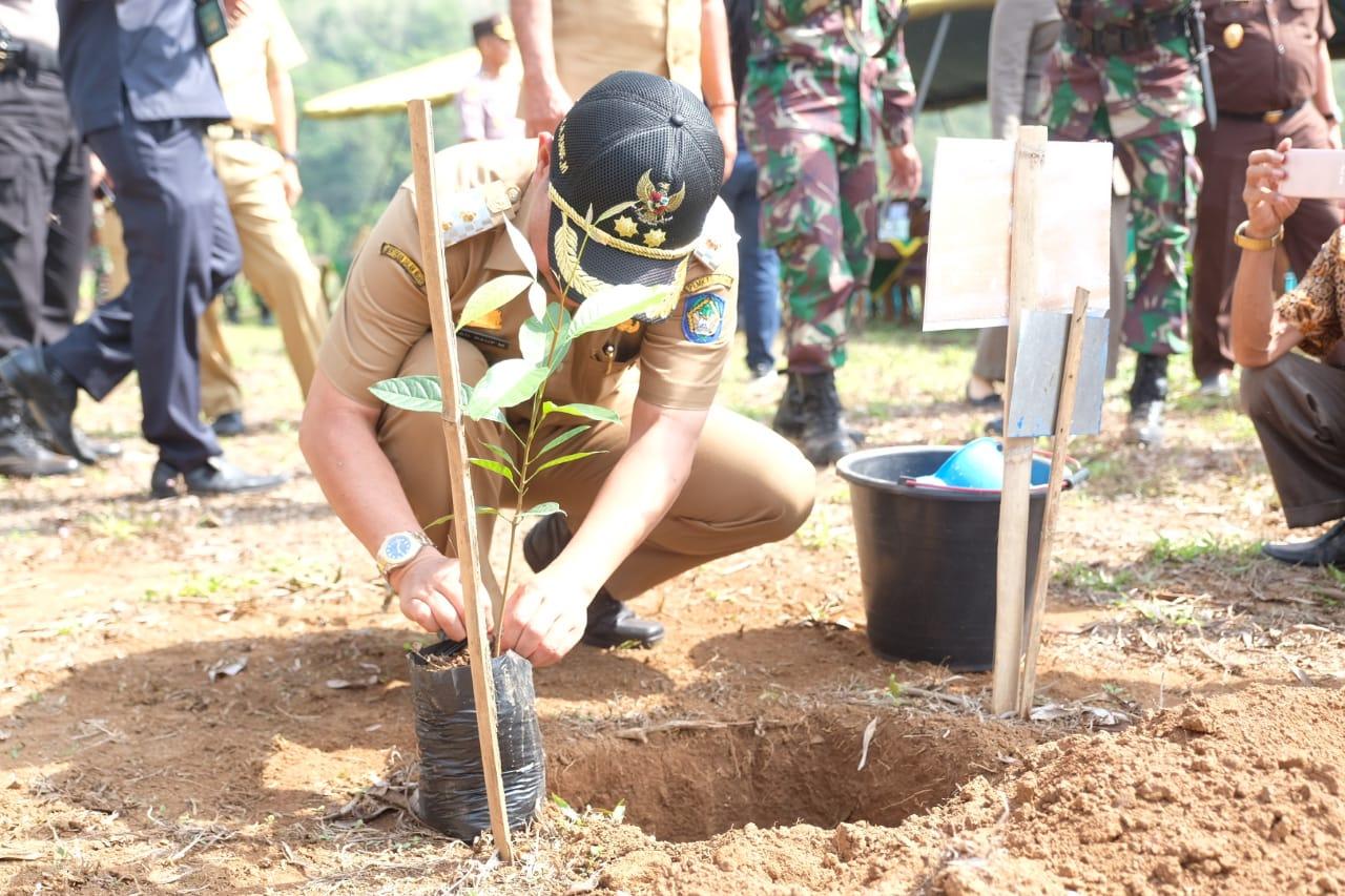 Wabup Dan Dandim 1409 Gowa Tanam Pohon Di Hari Juang TNI AD
