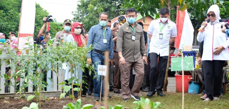Mentan RI Tinjau Progam P2L di Desa Borong Pa'la'la Gowa